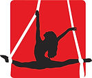 Fit2Fly-Logo-Aerial Silks Outline.jpg