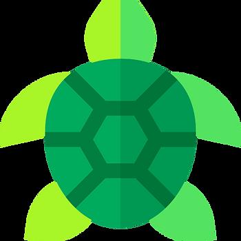 Tartaruga logo.png