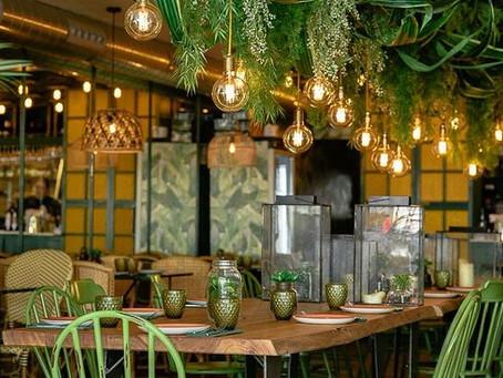 5 dicas simples e práticas de sustentabilidade para o seu restaurante