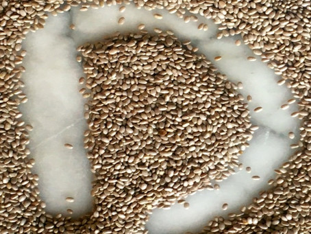 Chia Seeds – The Food of Strength