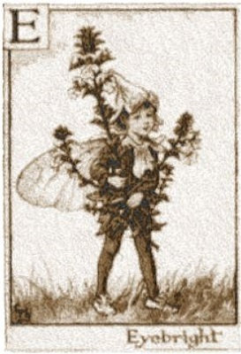 fairy 3230