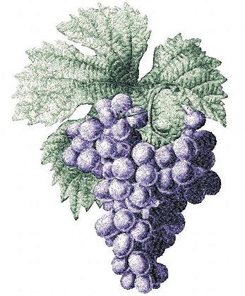 grapes 2492