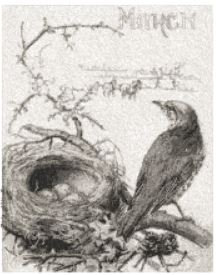 march nest