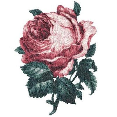flower 2448a