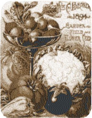 beckert seeds c.1894