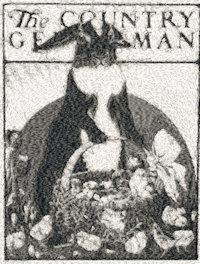 country gentlemen cover c.1925