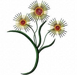 moonburst flower