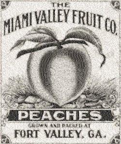 peach label