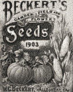 beckert's seeds c.1903