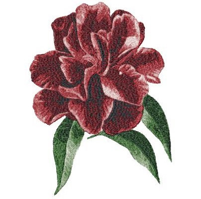 flower 3006
