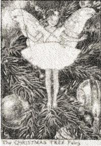 fairy 2542