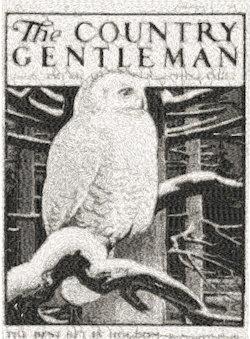 country gentlemen c.1934
