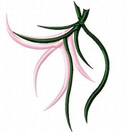 pink maiden flower