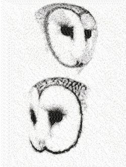 owls 2294