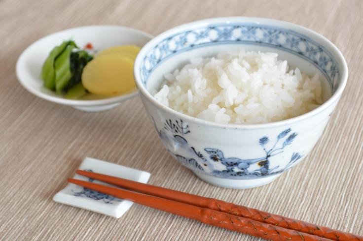 DINOSAUR 飯碗(小)&箸置き