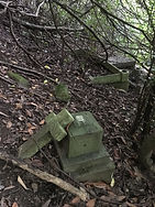 4 Forgotten graves, some with memorials.