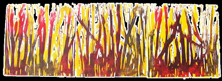 Waldbrand Kalifornien 2020