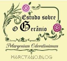 Estudo-do-Gerânio-marcyano.blog