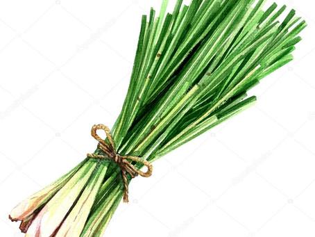 Óleo Essencial de Lemongrass