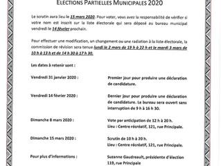 Élections partielles municipales 2020