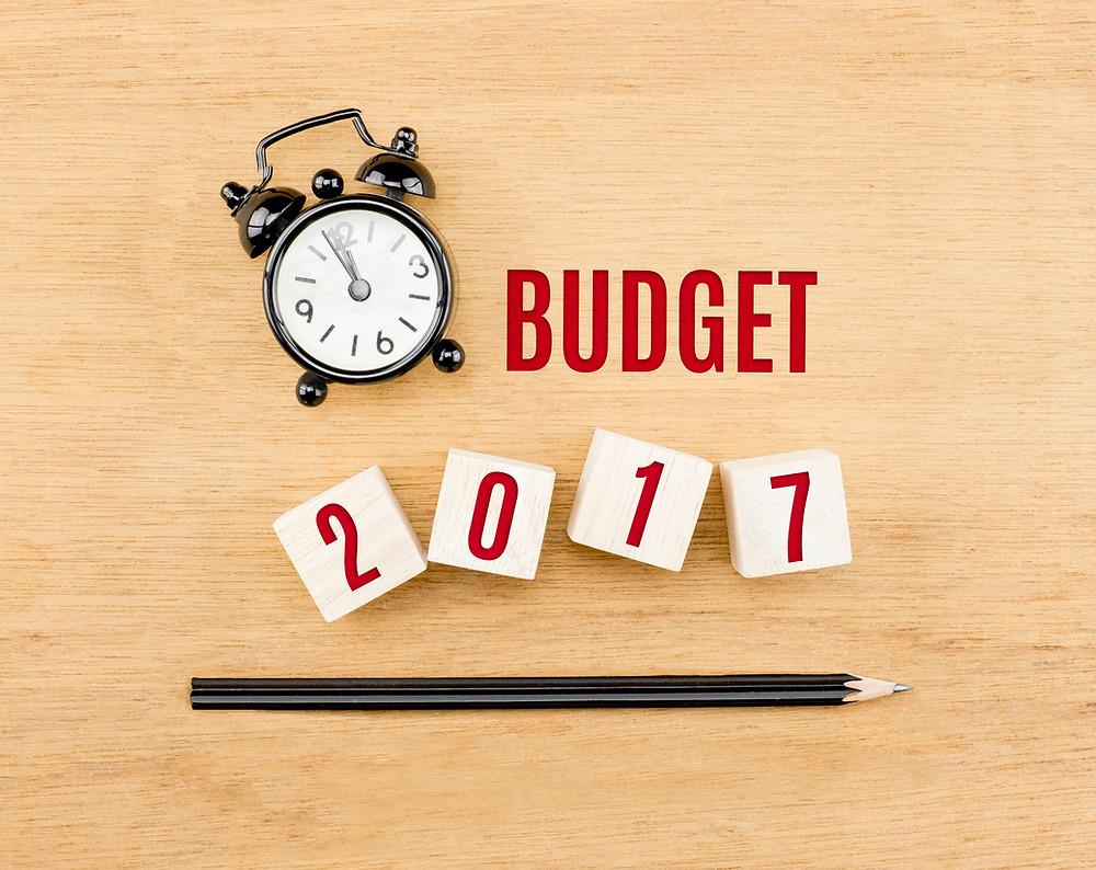 Vous pouvez consulter les prévisions budgétaires dans la section Budget 2017