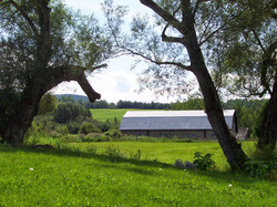 Village (21).jpg