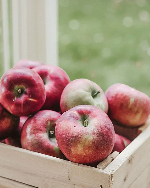 Tomber dans les pommes 🍎, cuisine d'aut
