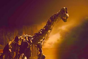 Moabosaurus web res.jpg