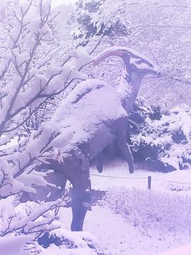 Parasaurolophus snow 01.jpg