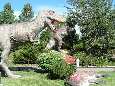Exhibit Spotlight: Tyrannosaurus rex