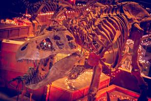 Christmas Kathy Tyrannosaurus 01.jpg