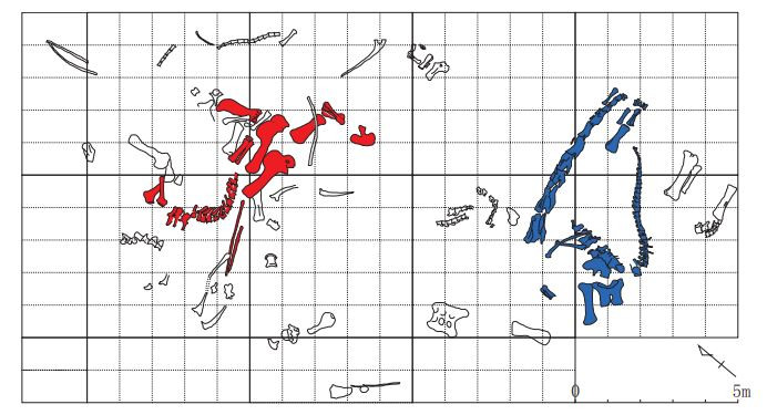 Do you prefer the clarity of Chuanjiesaurus, or the warmer sound of Analong? Analong is the skeleton on the right, in blue. Picture is presented under fair use, from Sekiya 2011.