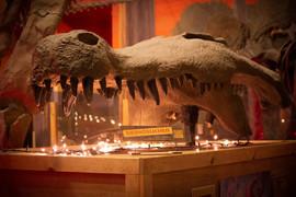 Christmas Deinosuchus 01 web.jpg