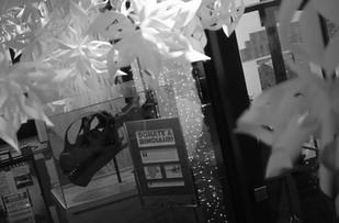 Christmas Camarasaurus and snowflakes 01
