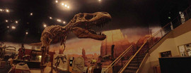 0 T rex Panorama Extra Light.jpg