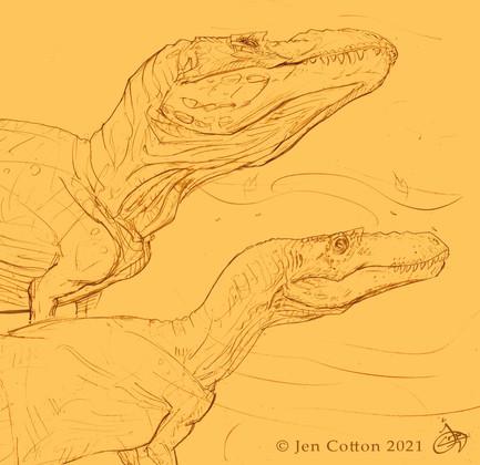 Nanotyrannus and Tyrannosaurus