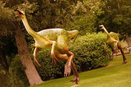 Ornithomimus 01 web res.jpg