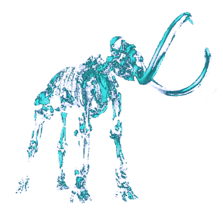 Glass%2520Mammoth%252001%2520alpha%25202