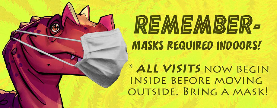 No Mask No Visit v2 web.jpg