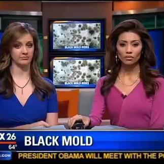 Toxic Mold Exposure and Chronic Illness