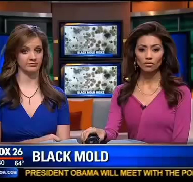 Toxic Mold Exposure and Chronic Illness