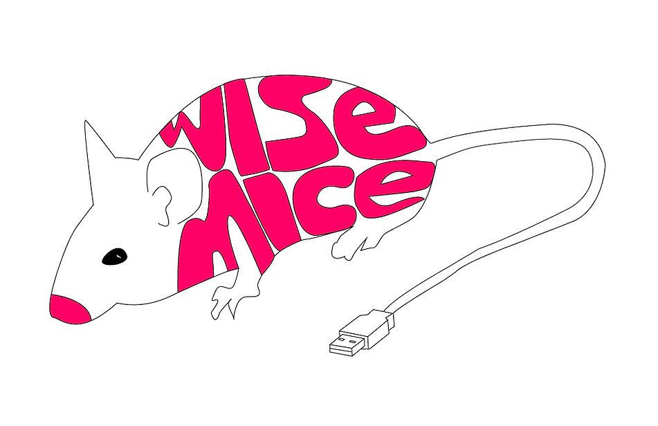 Logo Wisemice Groningen