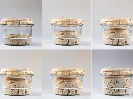 What are the Health Benefits of Sourdough Fermentation?