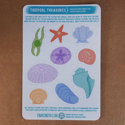 Tidepool Treasures Seashell Sticker Sheet