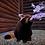 Thumbnail: Zoo Virtual Field Trip - Google Apps