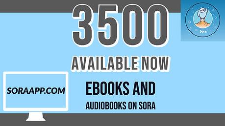 sora available now.jpg