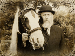 The Old Horseman