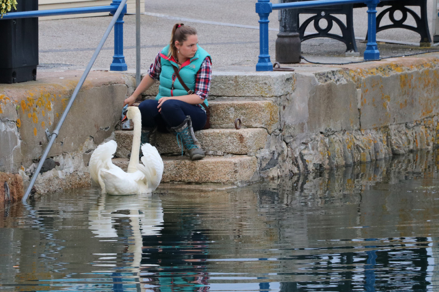 Me and my Swan
