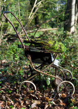 Woodland Stroller