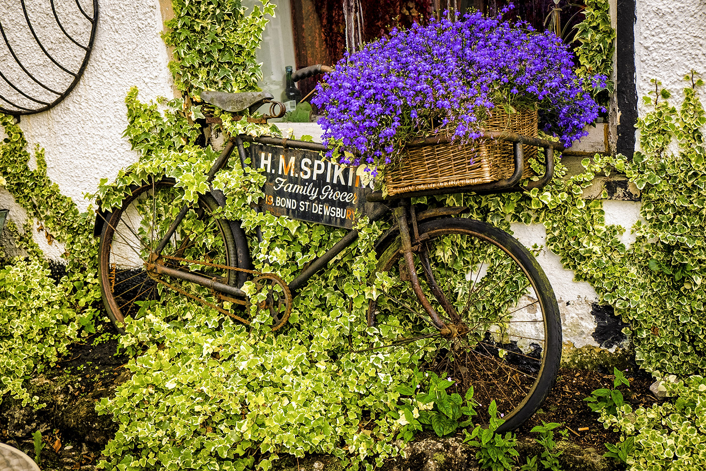 The Grocer's Bike